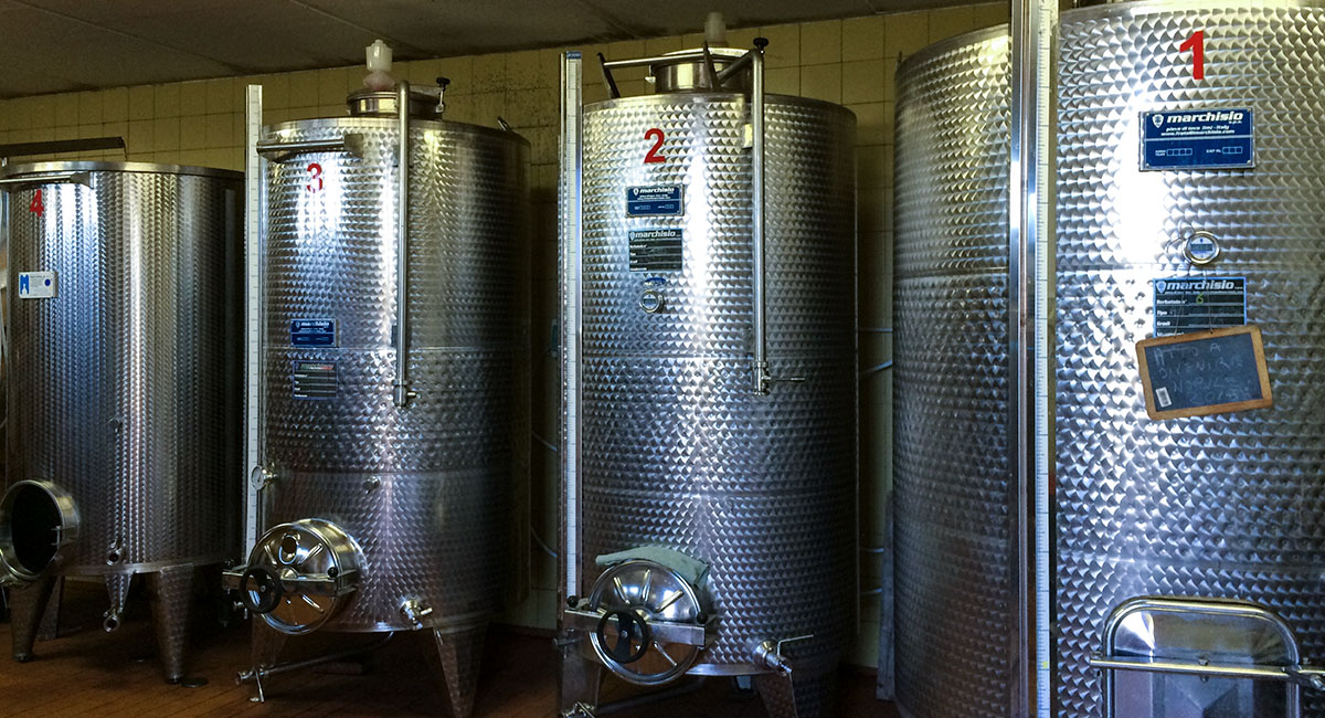 Manvi Wines Tour 02